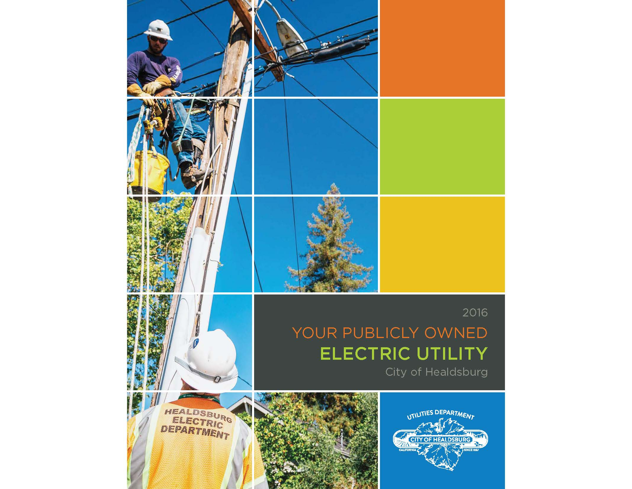 The 2016 Electric Report is Here!